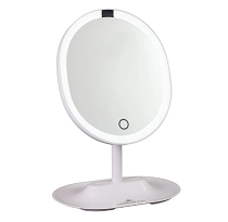 TOUCH WAVE MOTION-ACTIVATED LED MAKEUP MIRROR WITH DETACHABLE 5X MIRROR